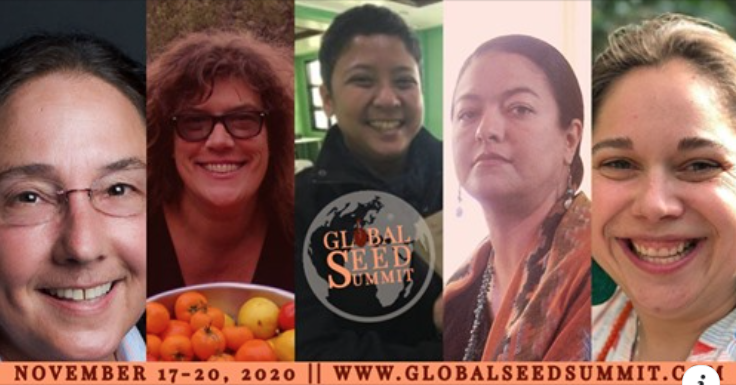 Global Seed Summit